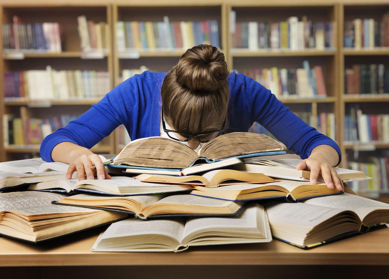 homework göteborg omdömen